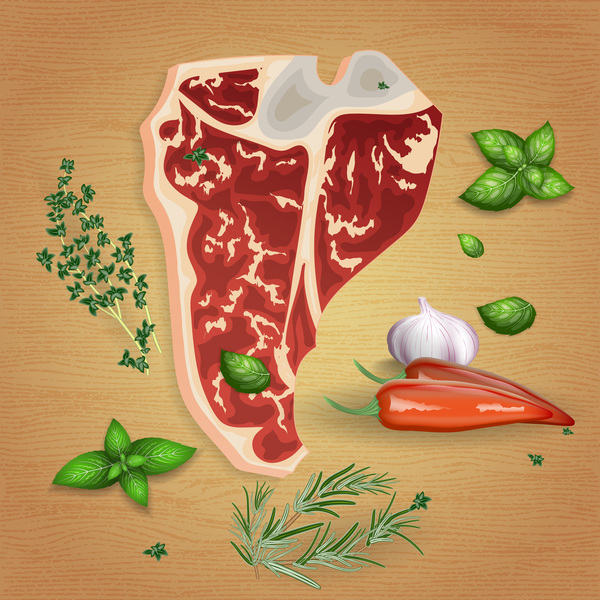 Beef with sauces and spices vector 11