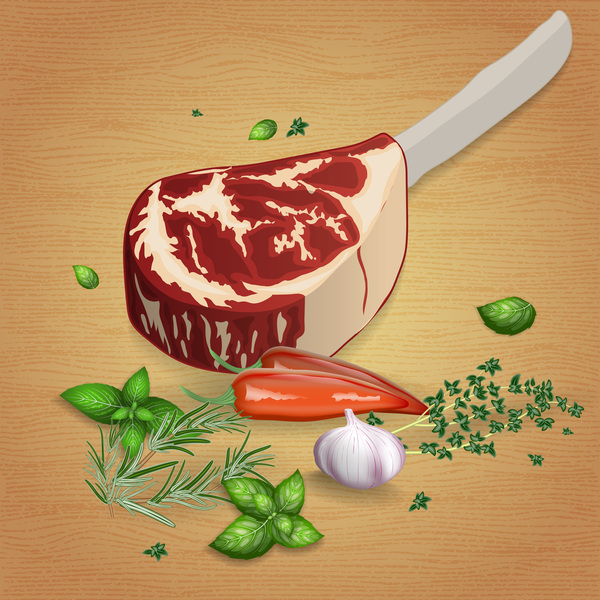 Beef with sauces and spices vector 12
