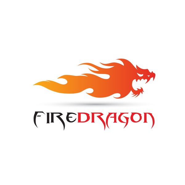 Fire dragon logo vector