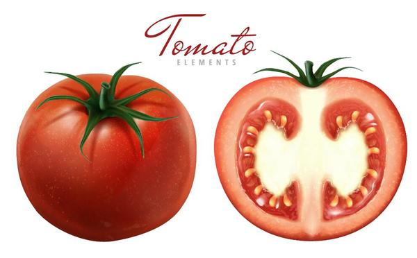 Fresh tomato with slice background vector