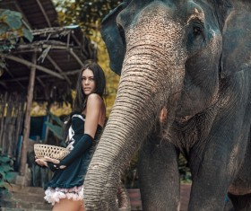 HD picture Beautiful woman with elephant