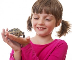 Little girl holding a mini tortoise HD picture