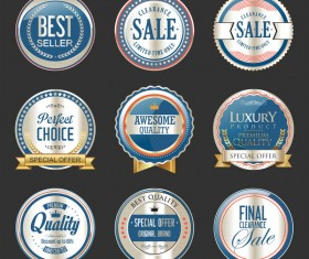 Premium and luxury silver and blue retro badges and labels vector