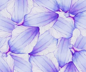 Purple watercolor flower petal pattern vector 02