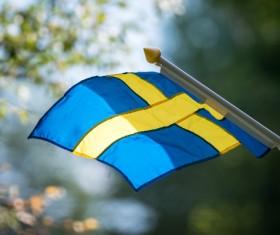 Snow Nordic countries Sweden Stock Photo 11
