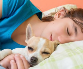 The little girl who hugs the puppy to sleep Stock Photo