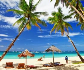 The shade on the beach Stock Photo
