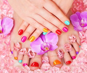 Various styles of nail Stock Photo 01