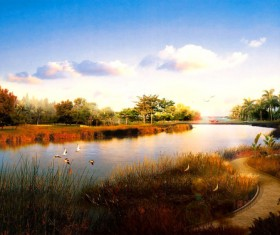 Wetland park dusk beauty HD picture