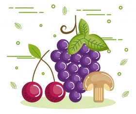 healthy fruit and mushroom vector