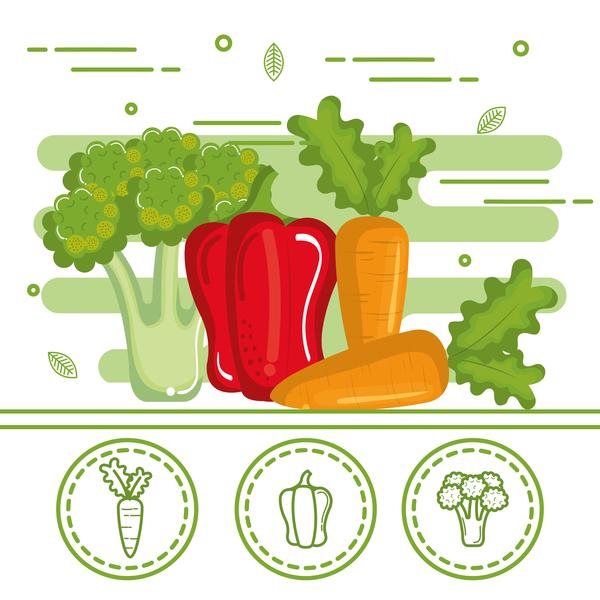 healthy vegetables vector 02