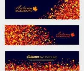 3 Kind autumn leaves banners vectors