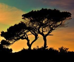 Cyprus National Park Sunset Stock Photo