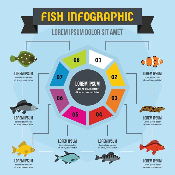 Flsh infographic design vector