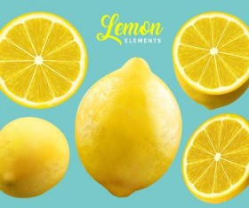 Fresh lemon background vector