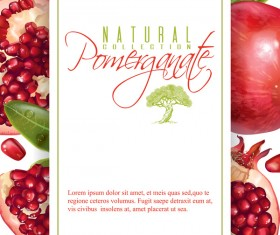 Fresh pomegranate background design vectors 03