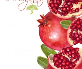 Fresh pomegranate background design vectors 04