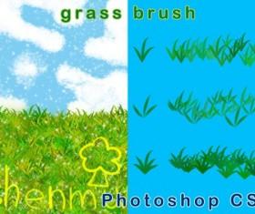 Grass decor photoshop brushes