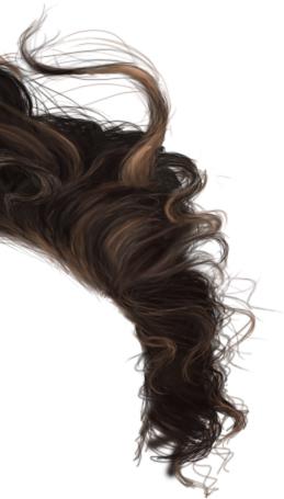 Hair photoshop brushes