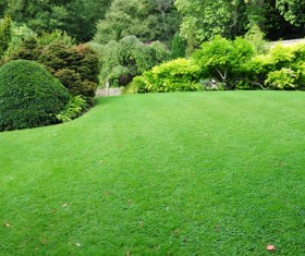 Hall and courtyard lawn landscape Stock Photo 06