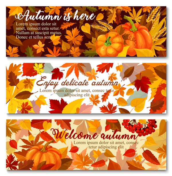 Harvest the fall banner vector material 04