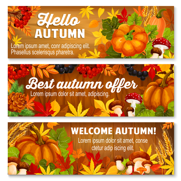 Harvest the fall banner vector material 08
