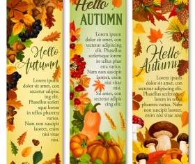 Hello autumn vertical banner vector set 05