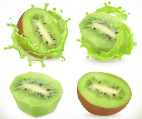 Kiwi fruit juice and splash vector