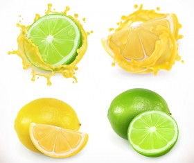Lemon and lime juice splash vector