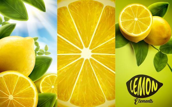 Lemon background illustration vectors