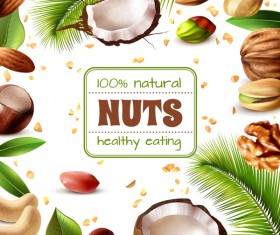 Natural nuts with frame vector