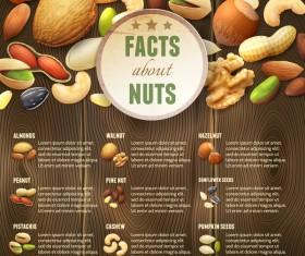 Nuts menu template vector