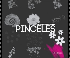Pinceles Flores Photoshop Brush