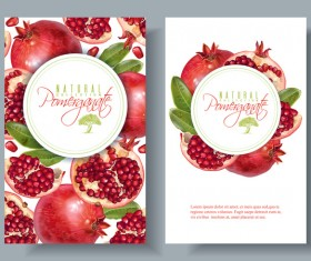 Pomegranate cards template vector 01