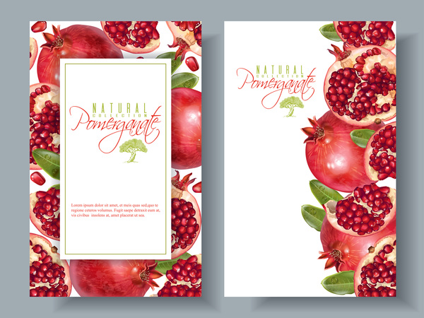 Pomegranate cards template vector 02
