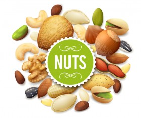 Shiny nuts background vector