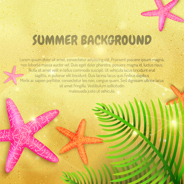 Summer beach background with starfish vector