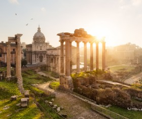 Sunlight in the Roman Forum Stock Photo