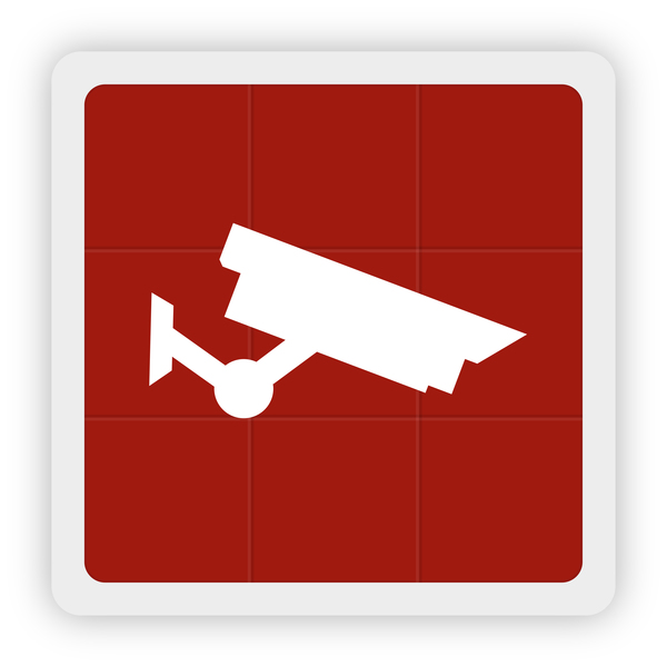 Surveillance cameras icon vector