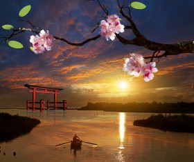Twilight cherry blossoms Stock Photo