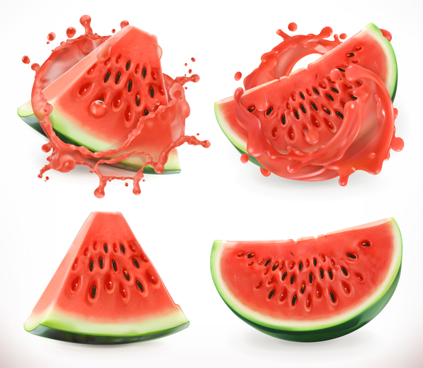 Watermelon juice and splash vector