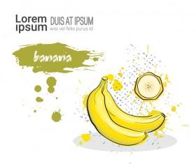 banana watercolor drawn vector