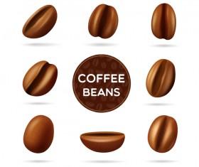 coffee beans illustration vector