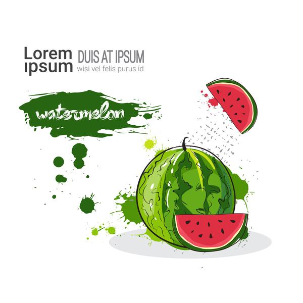 watermelon watercolor drawn vector