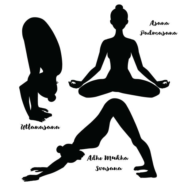 3 yoga pose silhouette vector design