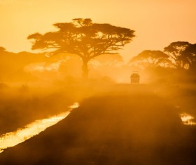 African cars in the natural park Stock Photo