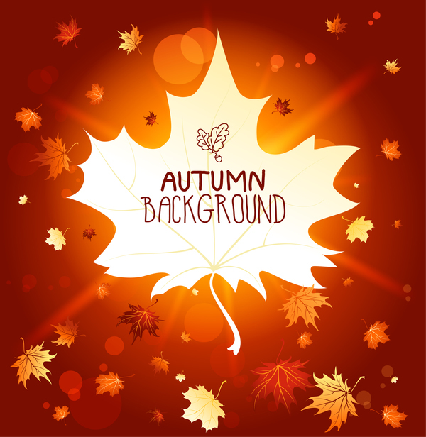Autumn background with blank leaf vector