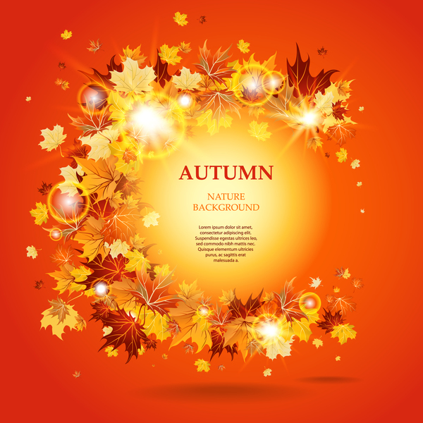 Autumn leaves background with shining light circles vector 01