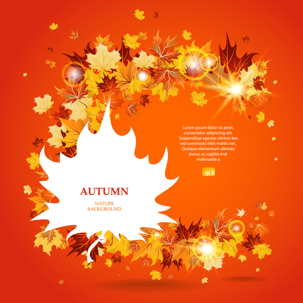 Autumn leaves background with shining light circles vector 02