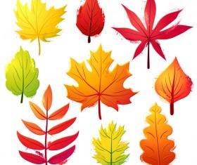 Autumn leaves set vector 02